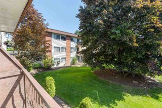 """Photo 15: 227 1909 SALTON Road in Abbotsford: Central Abbotsford Condo for sale in """"FOREST VILLAGE"""" : MLS®# R2583765"""