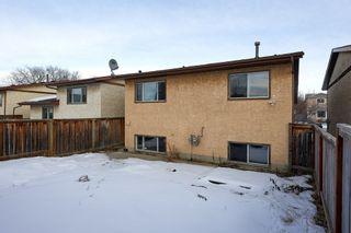 Photo 34: 4314 38 Street in Edmonton: Zone 29 House for sale : MLS®# E4225194