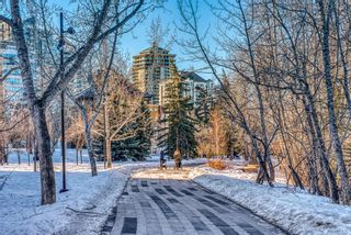Photo 32: 450 310 8 Street SW in Calgary: Eau Claire Apartment for sale : MLS®# A1060648