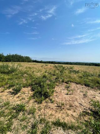 Photo 6: Lot Little Harbour Road in Kings Head: 108-Rural Pictou County Vacant Land for sale (Northern Region)  : MLS®# 202122504