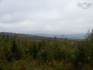 Photo 6: Tanner Hill Road in Limerock: 108-Rural Pictou County Vacant Land for sale (Northern Region)  : MLS®# 202121301