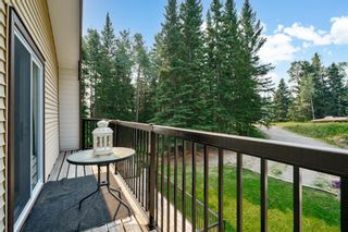 Photo 47: 6124 Township Road 314: Rural Mountain View County Detached for sale : MLS®# A1102303