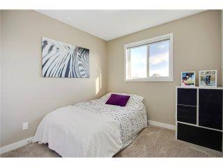 Photo 21: 169 MAHOGANY Heights SE in Calgary: Mahogany House for sale : MLS®# C4088923