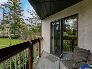 Photo 19: 310 75 W Gorge Rd in : SW Gorge Condo for sale (Saanich West)  : MLS®# 863938
