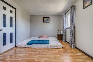 Photo 14: 143 Castleglen Way NE in Calgary: Castleridge Detached for sale : MLS®# A1100351