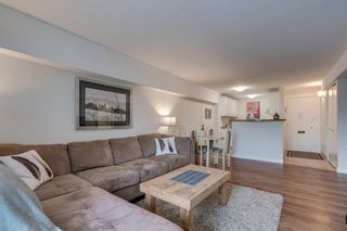 Photo 6: 460 519 17 Avenue SW in Calgary: Cliff Bungalow Apartment for sale : MLS®# A1053452
