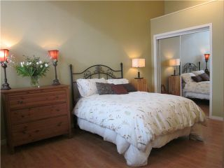 Photo 8: 302 549 columbia Street in New Westminster: Downtown NW Condo for sale : MLS®# v929106