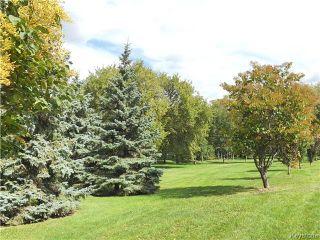 Photo 16: 238 Greene Avenue in Winnipeg: East Kildonan Residential for sale (3D)  : MLS®# 1625120