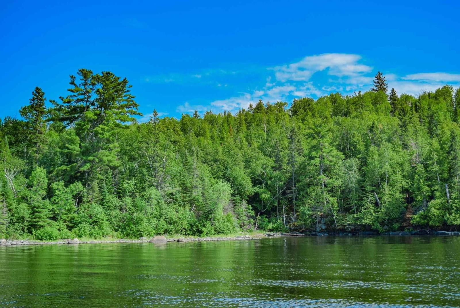 Main Photo: Lot 19 Five Point Island in South of Kenora: Vacant Land for sale : MLS®# TB212087
