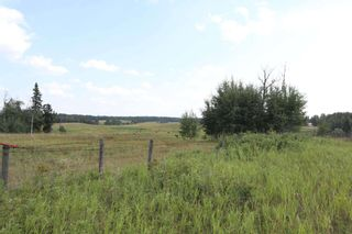 Photo 5: Twp 510 RR 33: Rural Leduc County Rural Land/Vacant Lot for sale : MLS®# E4256128