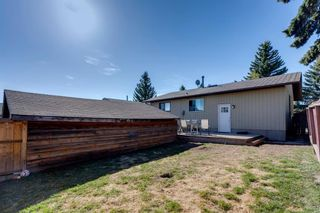 Photo 25: 11 Bedwood Place NE in Calgary: Beddington Heights Detached for sale : MLS®# A1100658