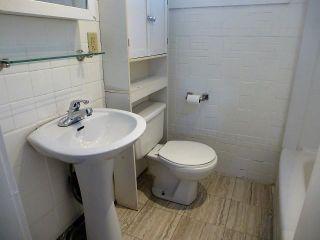 Photo 14: 11638 90 Street in Edmonton: Zone 05 House for sale : MLS®# E4246909
