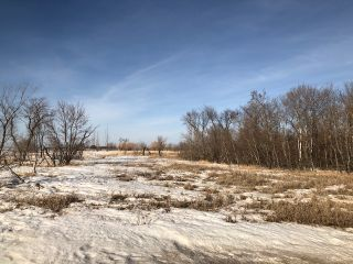 Photo 10: 0 53N Road: RM Tache Vacant Land for sale (R05)  : MLS®# 202109286