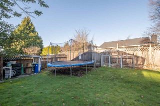 Photo 26: 20437 DALE Drive in Maple Ridge: Southwest Maple Ridge House for sale : MLS®# R2531682
