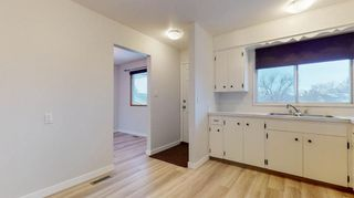Photo 10: 3807 49 Street NE in Calgary: Whitehorn Detached for sale : MLS®# A1066626