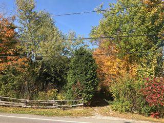 Photo 6: 652 Bush Street Part 4 Street in Caledon: Rural Caledon Property for sale : MLS®# W4689522