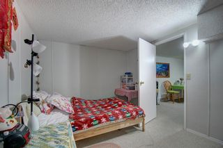 Photo 19: 503 35 Street NW in Calgary: Parkdale Detached for sale : MLS®# A1115340