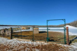 Photo 15: 13652 217 Road in Fort St. John: Fort St. John - Rural E 100th Manufactured Home for sale (Fort St. John (Zone 60))  : MLS®# R2350184