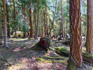 Photo 9: 413 CAMPBELL BAY Road: Mayne Island Land for sale (Islands-Van. & Gulf)  : MLS®# R2564883