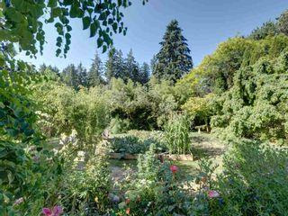 Photo 24: 2595 SYLVAN Drive: Roberts Creek House for sale (Sunshine Coast)  : MLS®# R2481642