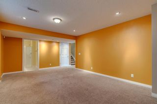 Photo 37: 1571 COPPERFIELD Boulevard SE in Calgary: Copperfield Detached for sale : MLS®# A1107569