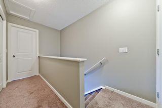 Photo 22: 75 NEW BRIGHTON PT SE in Calgary: New Brighton House for sale : MLS®# C4254785