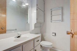 Photo 27: 3432 LANE CR SW in Calgary: Lakeview House for sale : MLS®# C4279817