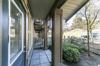 """Photo 31: 5 20326 68 Avenue in Langley: Willoughby Heights Townhouse for sale in """"SUNPOINTE"""" : MLS®# R2566107"""
