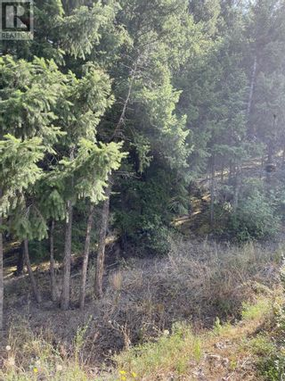 Photo 23: 1803 SOUTH LAKESIDE DRIVE in Williams Lake: Vacant Land for sale : MLS®# R2612495
