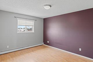 Photo 9: 8 4911 51 Avenue: Cold Lake Condo for sale : MLS®# E4255468