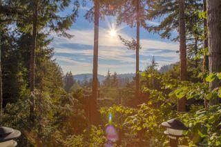 Photo 4: 3821 BAYRIDGE Avenue in West Vancouver: Bayridge House for sale : MLS®# R2376716