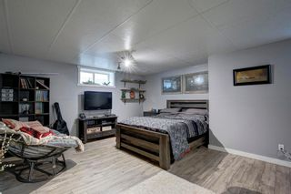 Photo 24: 50 Martha's Place NE in Calgary: Martindale Detached for sale : MLS®# A1119083