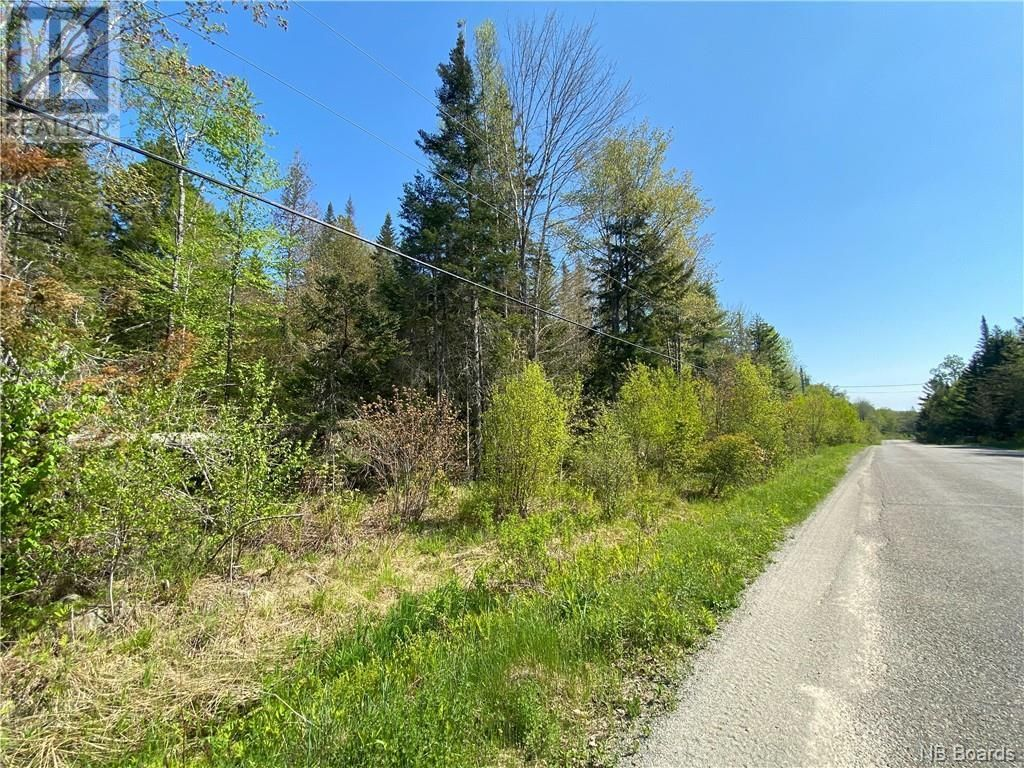 Main Photo: 5264 Rte 770 in Rollingdam: Vacant Land for sale : MLS®# NB058269