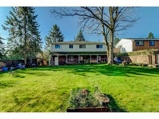 Photo 37: 15387 20A Avenue in Surrey: King George Corridor House for sale (South Surrey White Rock)  : MLS®# R2557247