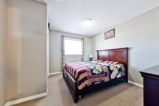 Photo 6: 324 MARTINDALE Drive NE in Calgary: Martindale Detached for sale : MLS®# A1080491