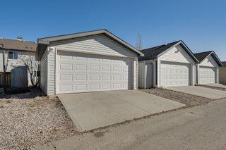 Photo 11: 20235 56 Ave NW: Edmonton House Duplex for sale : MLS®# E4238994