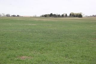 Photo 4: On Highway 567 in Rural Rocky View County: Rural Rocky View MD Land for sale : MLS®# C4233359