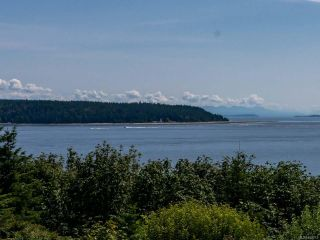 Photo 64: 321 Carnegie St in CAMPBELL RIVER: CR Campbell River Central House for sale (Campbell River)  : MLS®# 840213