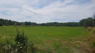 Photo 4: Lot Brooklyn Road in Middleton: 400-Annapolis County Commercial for sale (Annapolis Valley)  : MLS®# 201920414