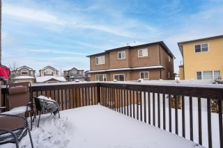 Photo 46: 808 ALBANY Cove in Edmonton: Zone 27 House for sale : MLS®# E4227367