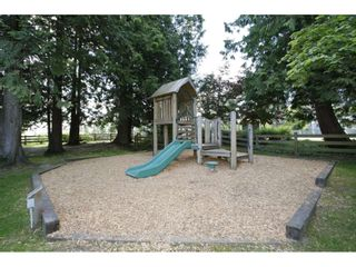 """Photo 20: 73 20875 80 Avenue in Langley: Willoughby Heights Townhouse for sale in """"PER"""" : MLS®# R2241271"""