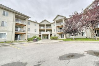 Main Photo: 308 4000 Citadel Meadow Point NW in Calgary: Citadel Apartment for sale : MLS®# A1143659