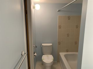 Photo 10: 107 42 ALPINE Place: St. Albert Condo for sale : MLS®# E4236054