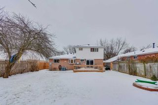 Photo 18: 224 Sylvan Ave in Toronto: Guildwood Freehold for sale (Toronto E08)  : MLS®# E4356783