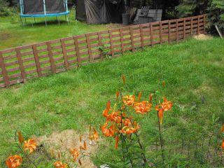 Photo 16: 5234 Ravine Drive: Elk Point House for sale : MLS®# E4211315