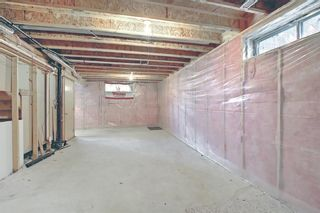 Photo 38: 766 Coral Springs Boulevard NE in Calgary: Coral Springs Detached for sale : MLS®# A1136272