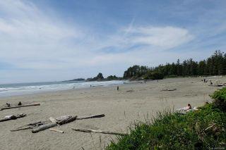 Photo 34: 23 1431 Pacific Rim Hwy in : PA Tofino Condo for sale (Port Alberni)  : MLS®# 875658