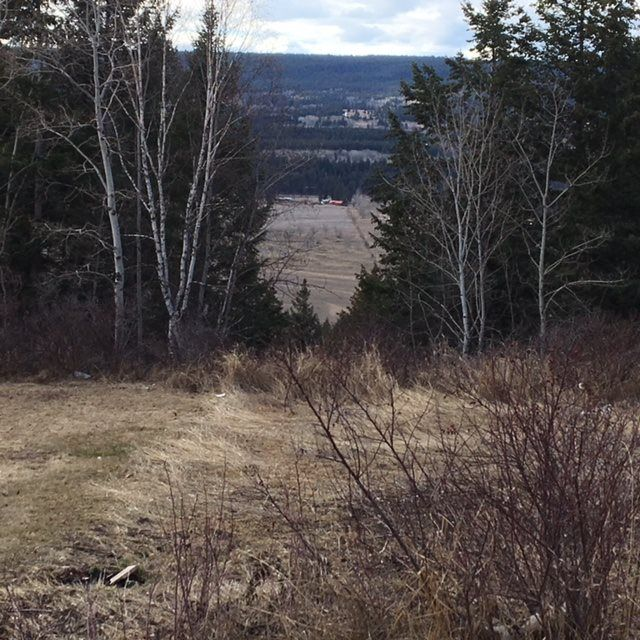 Photo 4: Photos: 8072 S 97 Highway in Quesnel: Quesnel Rural - South House for sale (Quesnel (Zone 28))  : MLS®# R2353450