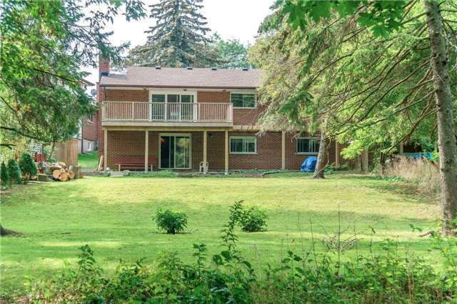 Photo 19: Photos: 913 Walnut Court in Oshawa: Donevan House (Bungalow) for sale : MLS®# E3931287