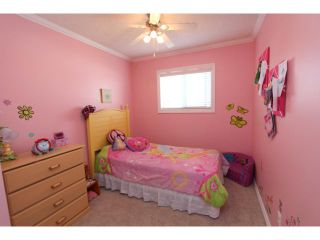 Photo 10: 166 TIPPING Close SE: Airdrie Residential Detached Single Family for sale : MLS®# C3512379